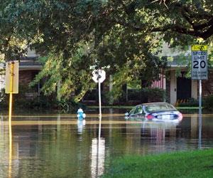 Bishop Clams Flood Services